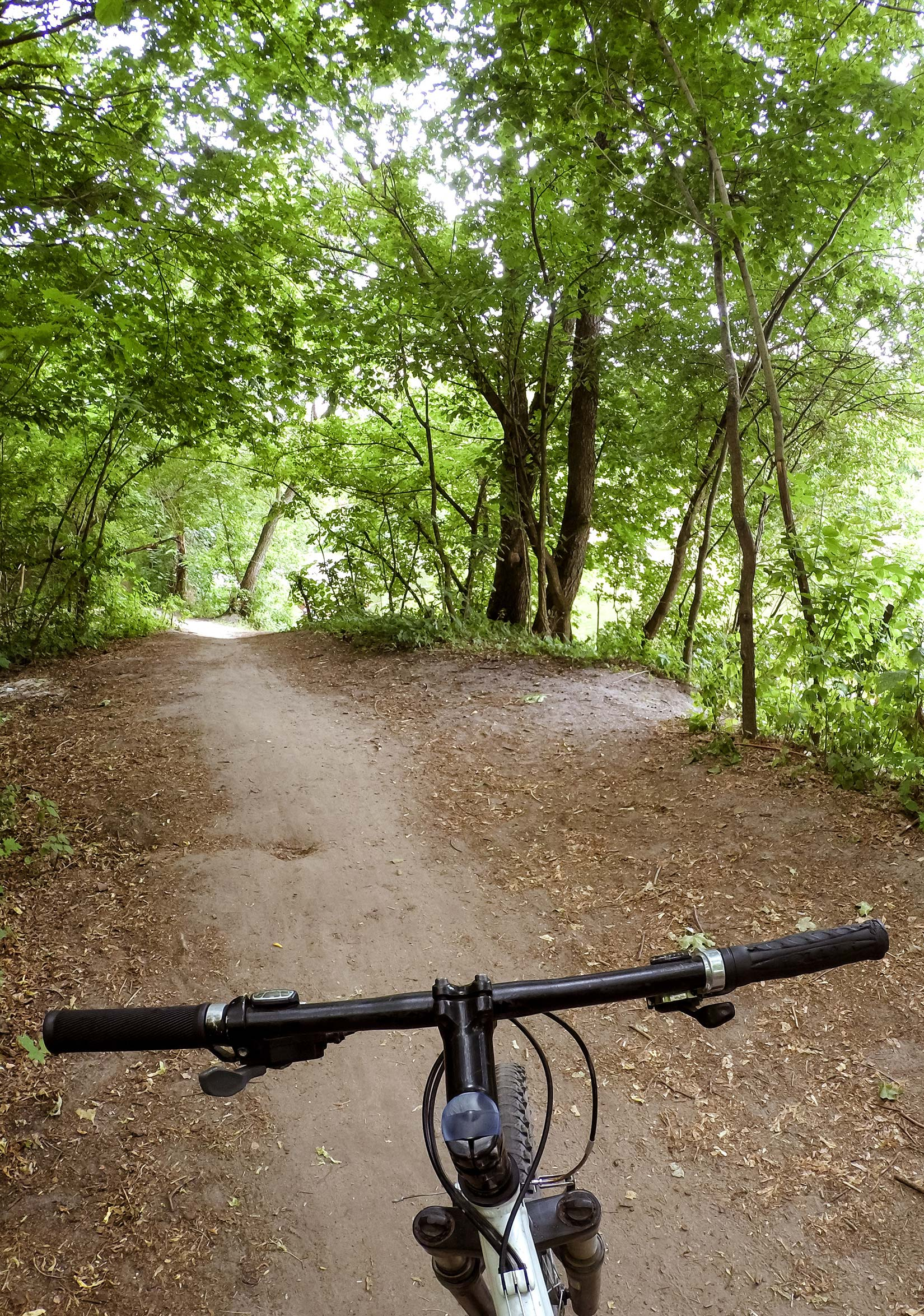 View over cycle handlebars to the track ahead through the woods